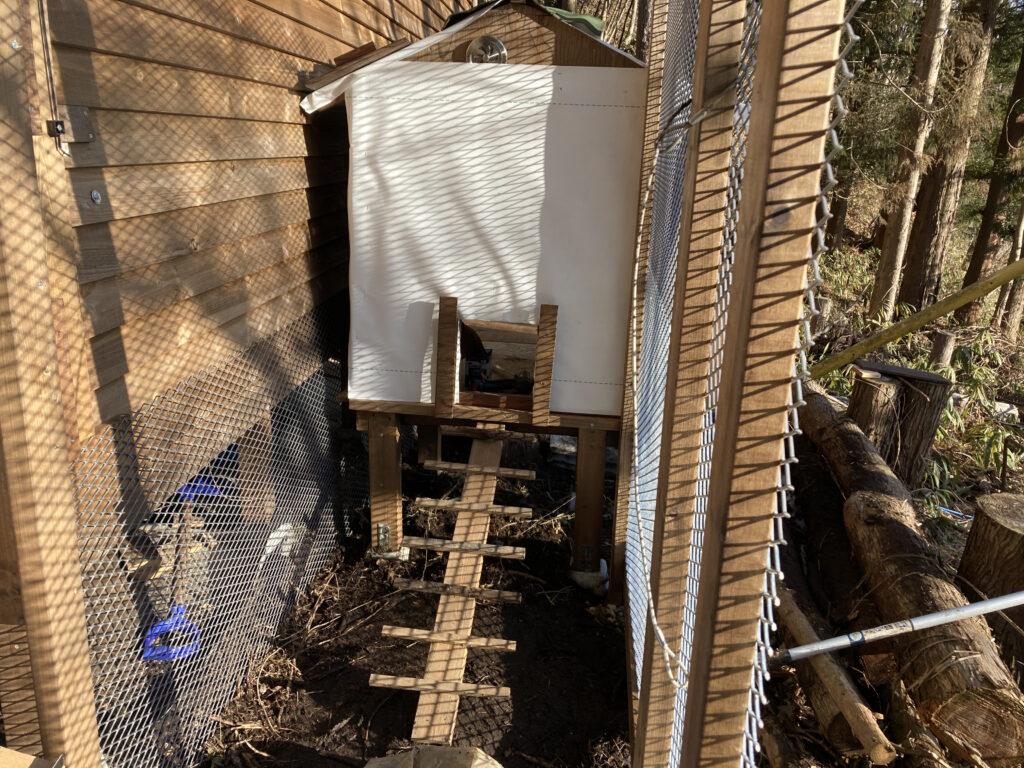 フェンス張り(新・鶏小屋作り4)